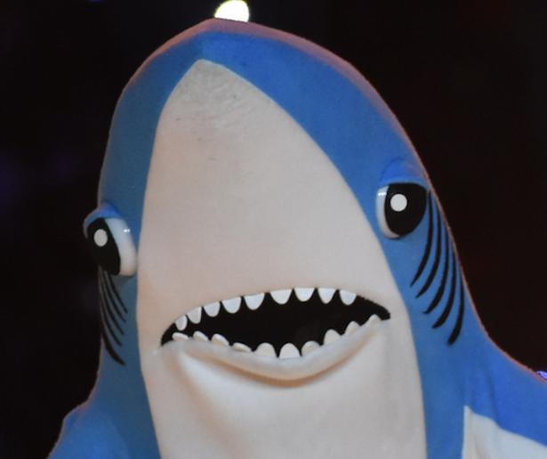Left Shark