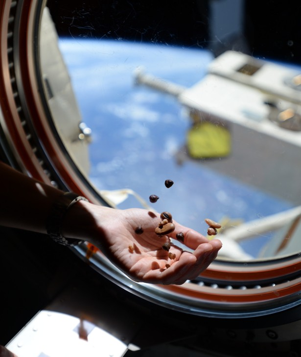 space coffee  astronauts are getting a fancy new espresso machine