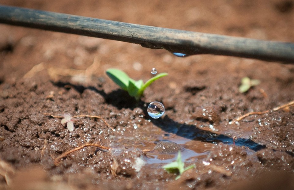 Selling The Desert S Water Conservation Lessons To The