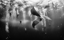 Winners of the 2015 National Geographic Traveler Photo Contest