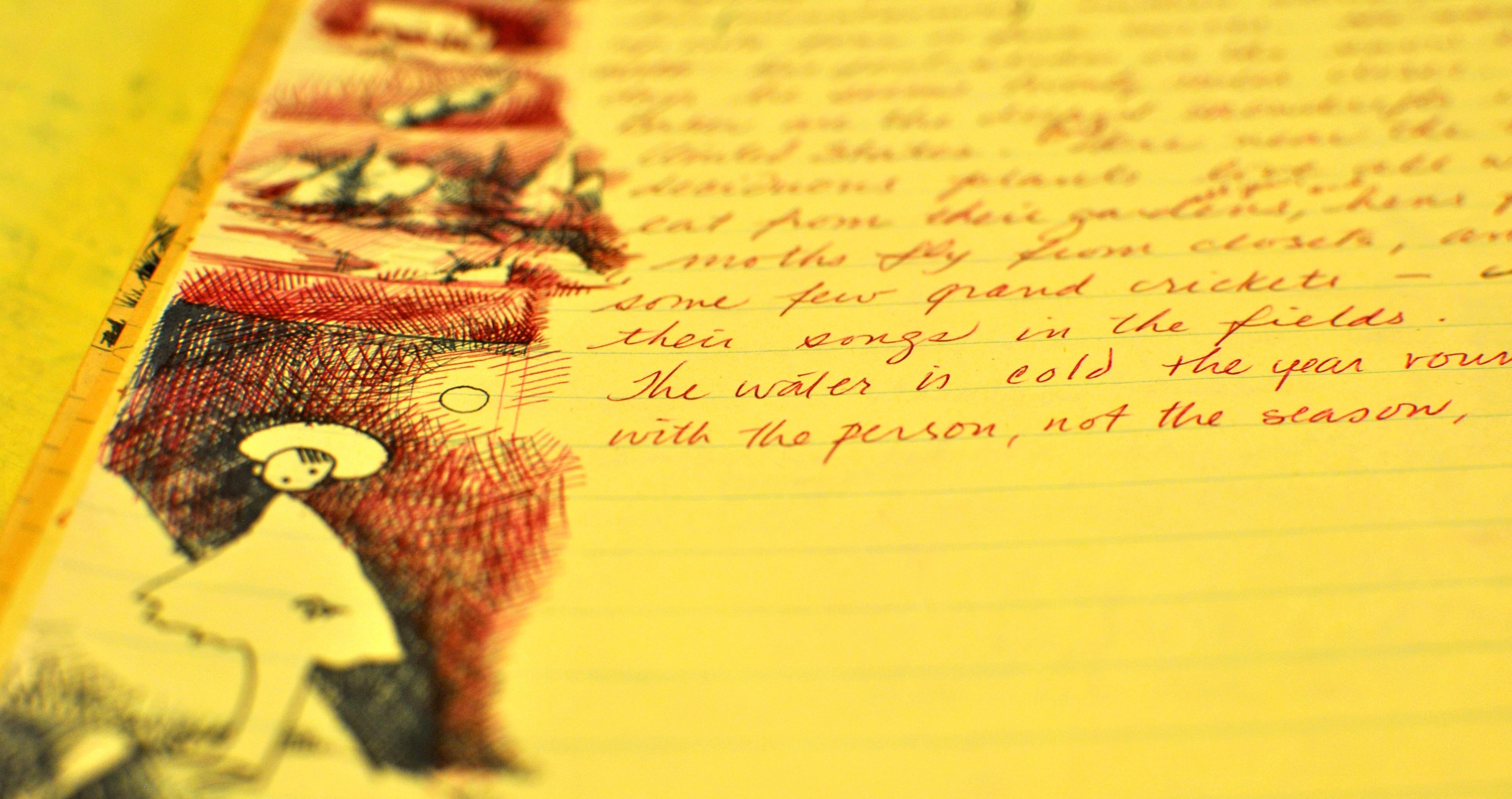 """Annie Dillard Essay: """"Sojourner"""""""