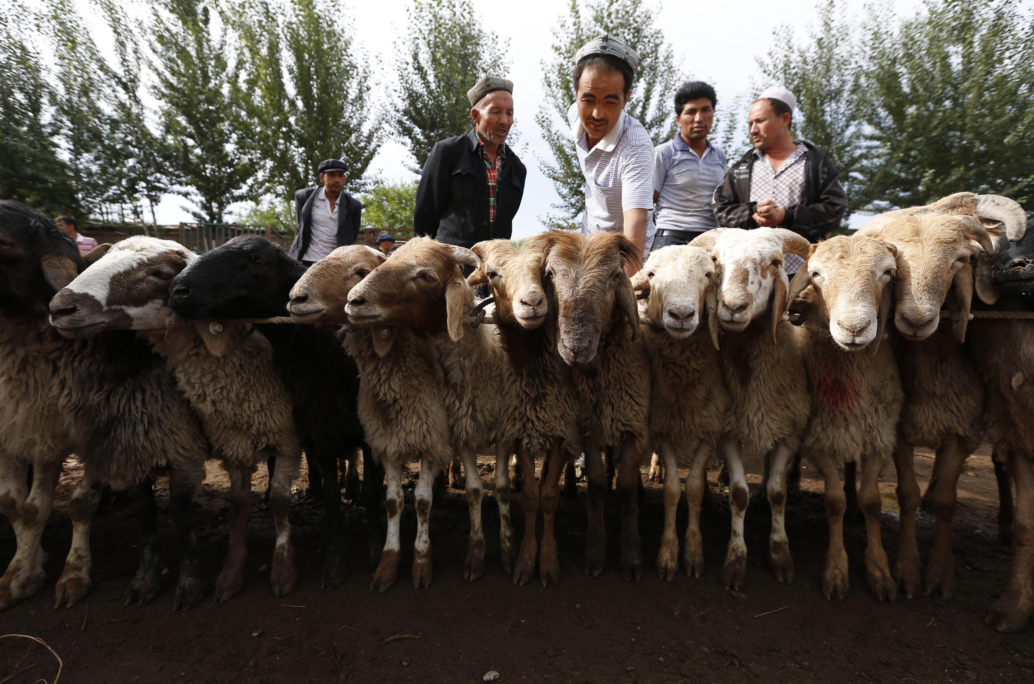 The Uighurs, Chinas Embattled Muslim Minority, Are Still