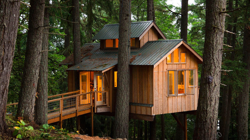 Living Wood Tree House Would You Live In A Treehouse The Atlantic