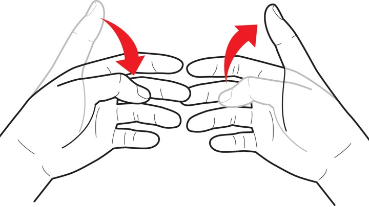 the evolution of hand gestures why do some die out and others
