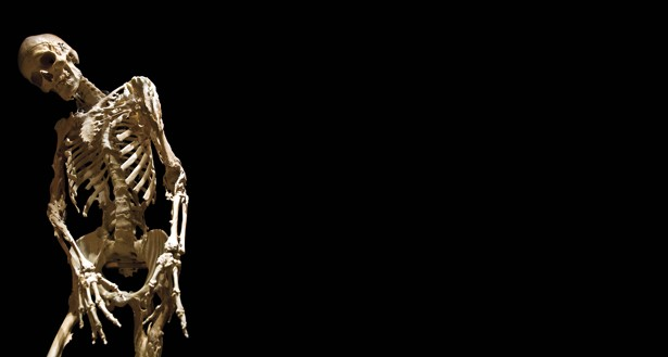 the girl who turned to bone - the atlantic, Skeleton