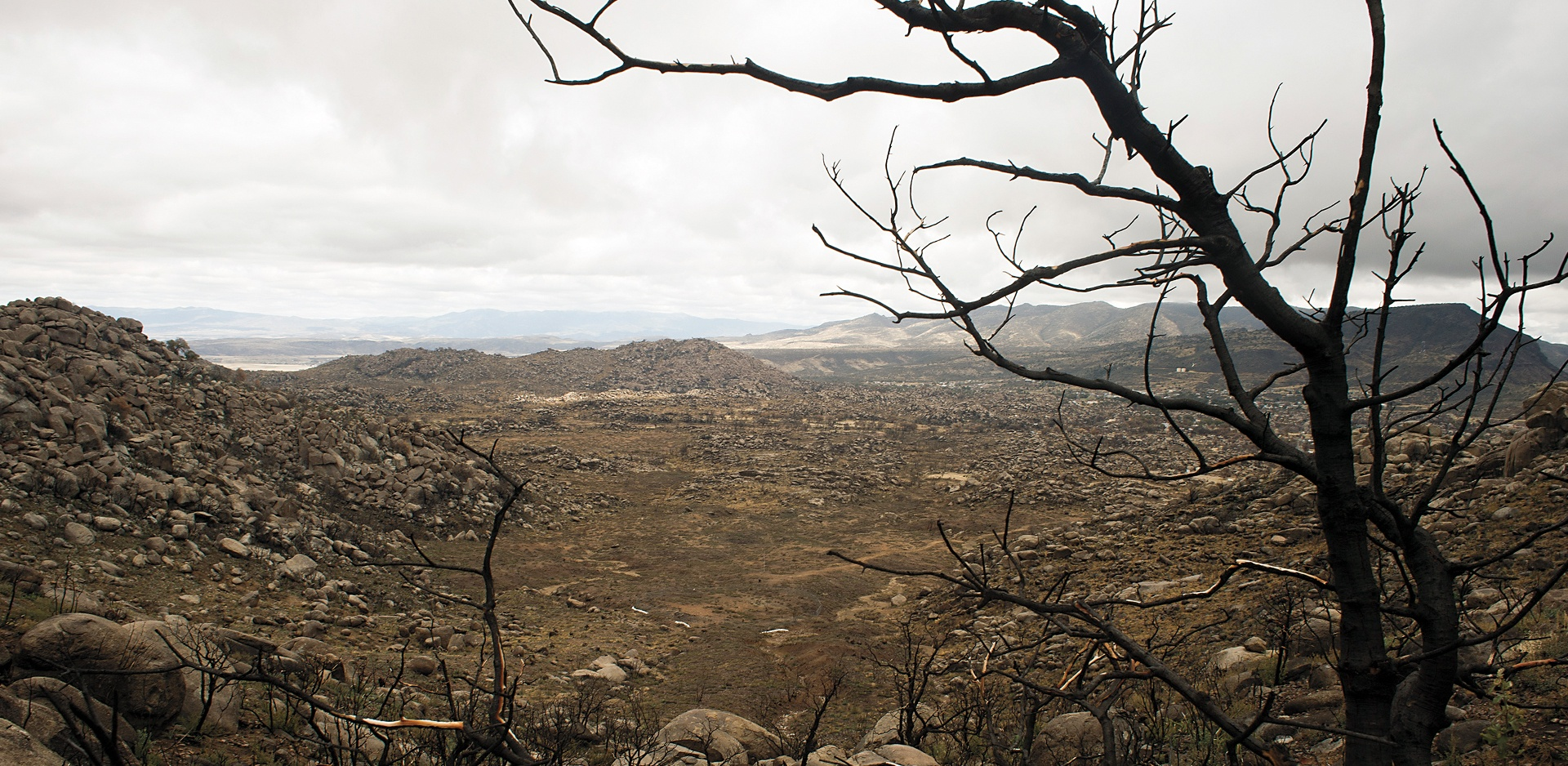 The Yarnell Disaster: What Caused the Deadliest Fire in 80 Years