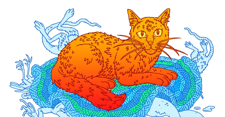 Why Do So Many People Like Cats The Atlantic