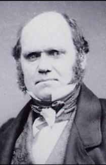 Darwin1854