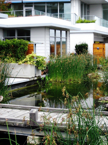 nature is integrated into Dockside Green (c2011 FK Benfield)