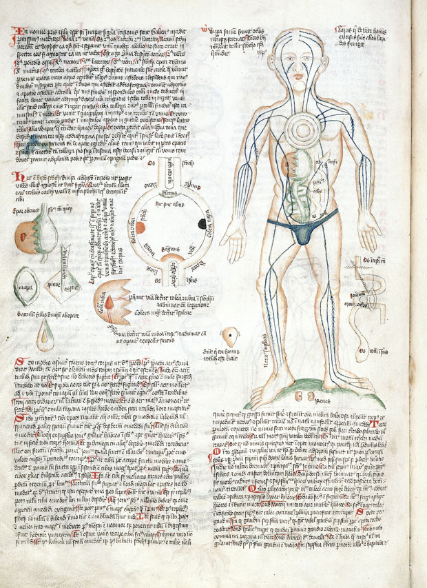 The Art Of Medicine Mapping The Body With 2000 Years Of Images