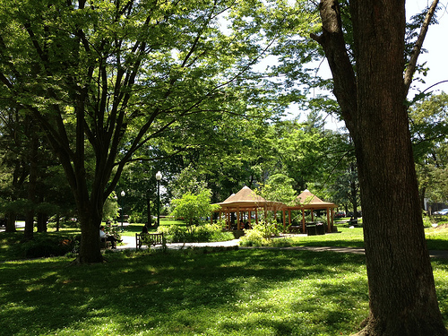 neighborhood park, Chevy Chase, MD (c2013 FK Benfield)