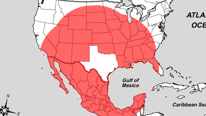 Map Of Texas And Louisiana Border With Cities.What S Closer To Texas Than Texas Is To Itself The Atlantic