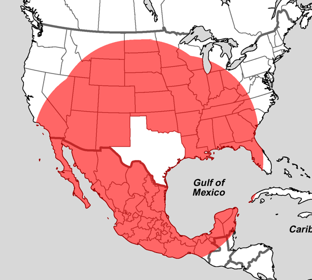 What S Closer To Texas Than Texas Is To Itself The Atlantic
