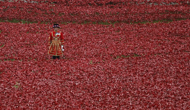 Is there a better way to observe veterans day the atlantic a yeoman warder stands by ceramic poppies during armistice day at the tower of london kevin coombsreuters publicscrutiny Image collections