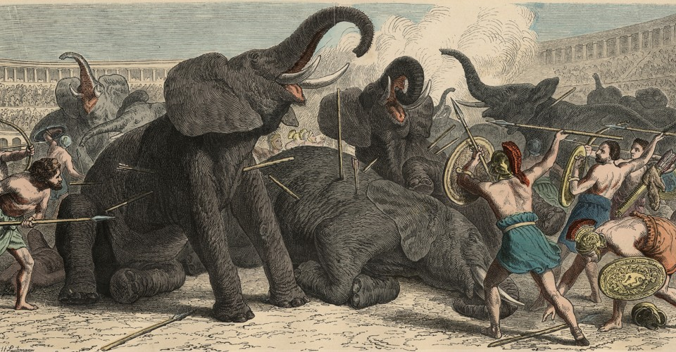 The Exotic Animal Traffickers Of Ancient Rome The Atlantic
