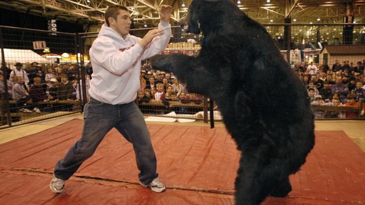 Image result for lance palmer wrestles bears
