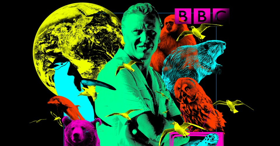 Every Episode of David Attenborough's Life Series, Ranked - The Atlantic