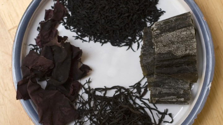 A few types of edible seaweed displayed on a plate