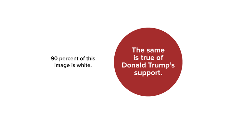 90 percent of this image is white. The same is true of Donald Trump's support.