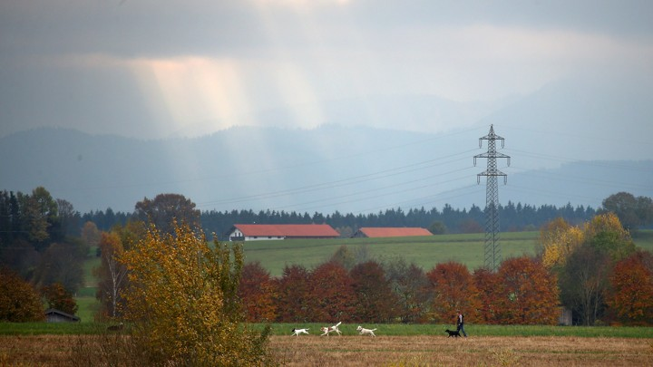 A man walks his dog through farmland in a field near Holzkirchen, in the south of Germany.