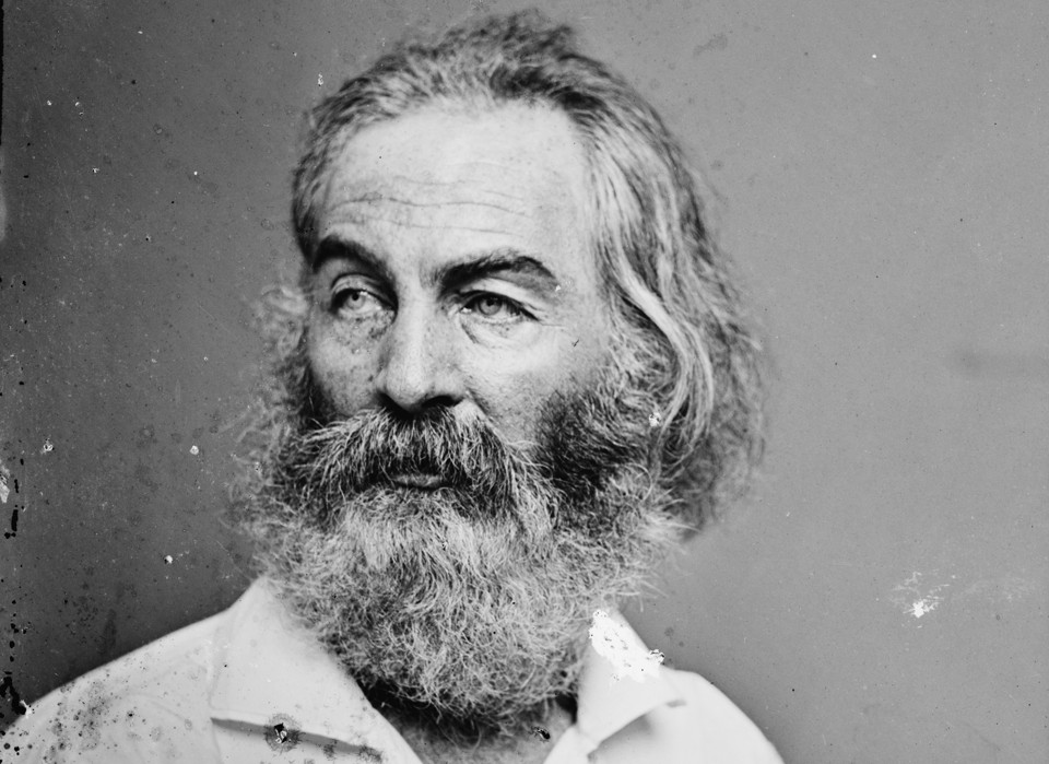 america as seen by walt whitman By walt whitman i hear america singing i hear america singing, the varied carols i hear it was seen every hour in the actions of the men of that city.