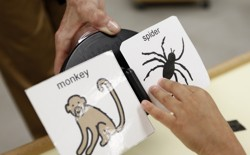 A child's hand hovers over a cartoon of a spider and a monkey.