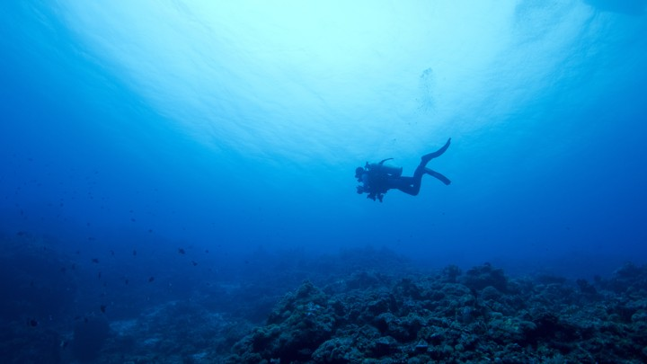 A diver swims over a rocky sea floor.