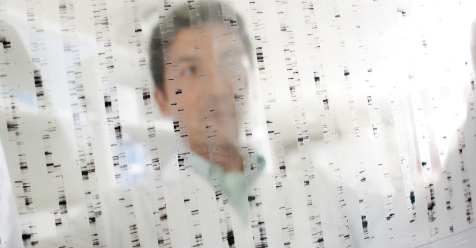What If (Almost) Every Gene Affects (Almost) Everything?