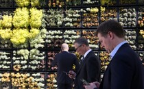 People look at their cell phones in front of a wall garden during the Milken Institute Global Conference in Beverly Hills, California, in May 2017.
