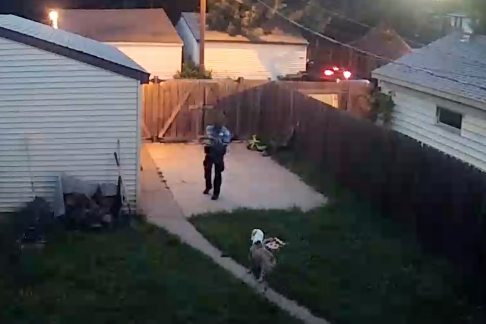 What Dog Shootings Reveal About American Policing