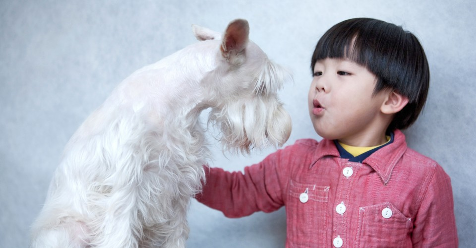 7d4c946dfeaa Why Do Humans Talk to Animals If They Can't Understand? - The Atlantic