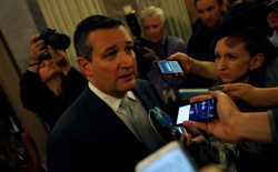 Texas Senator Ted Cruz speaks with reporters.