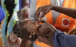 An adult administers an oral vaccine to a baby.