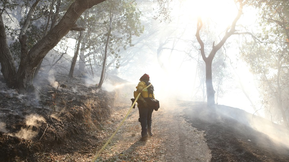 A firefighter stands in a smoky area of woods.
