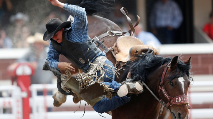 A rider falling off of a bucking horse at a rodeo