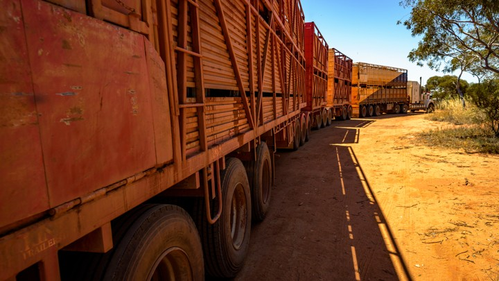 "A trackless ""road train"" drives through the Australian outback."