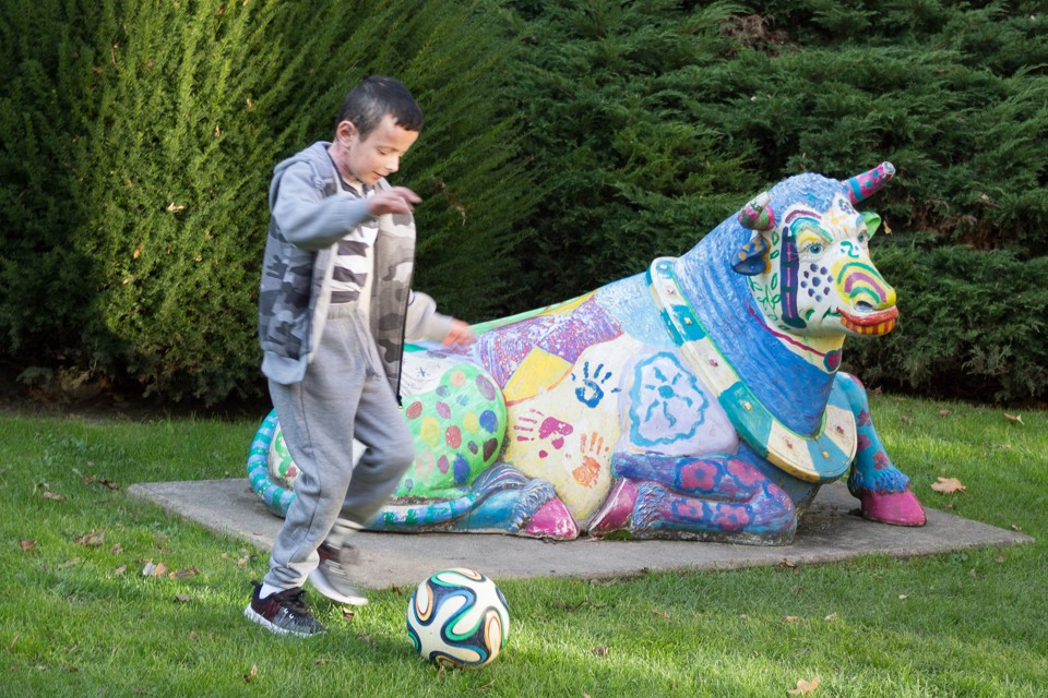 A little boy playing soccer next to a colorful statue of a cow