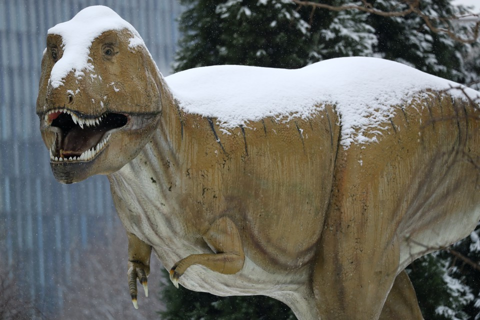 A statue of a dinosaur covered in snow