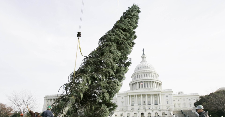photo image Republicans Are Fighting Over Christmas