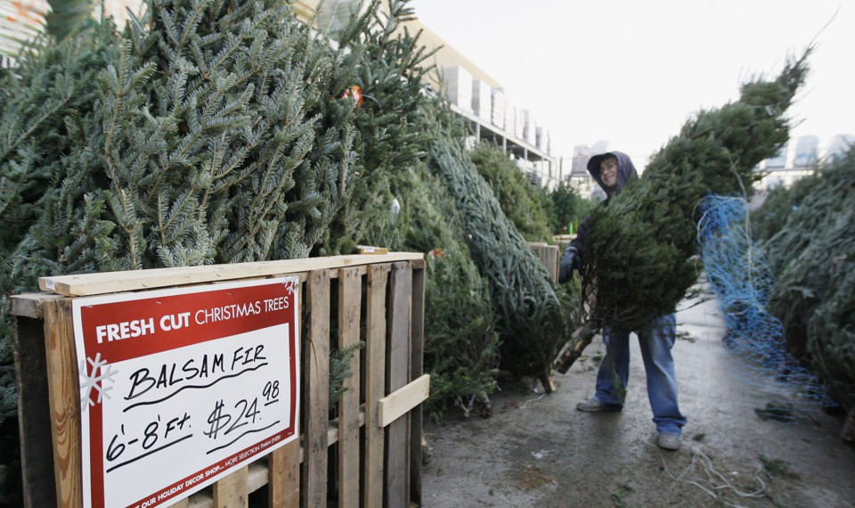 Places To Get A Christmas Tree Near Me