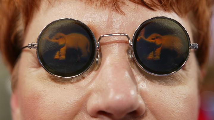 A delegate wears elephant-themed glasses at the 2004 Republican National Convention.