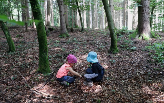 Superb Two kids play in a forest