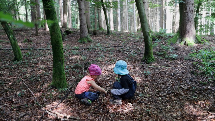 Two kids play in a forest.