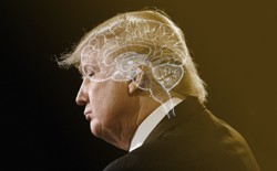 A profile of Donald Trump with the shape of a brain superimposed