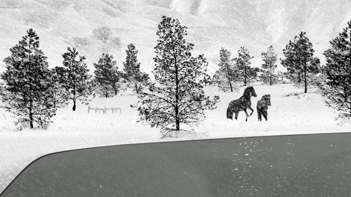 A still from Abbas Kiarostami's film '24 Frames'