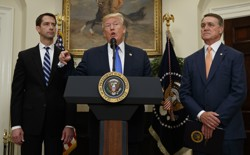 President Trump flanked by Senators Tom Cotton and David Perdue