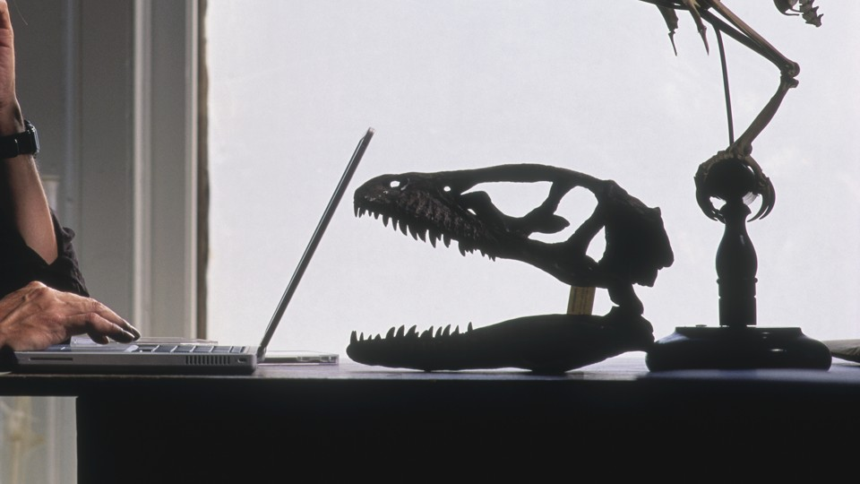 A person uses a laptop computer next to a fossilized dinosaur skull.
