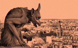 A photograph of a gargoyle overlooking Paris