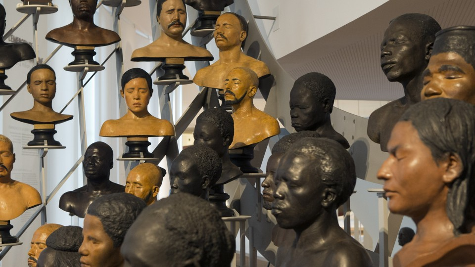 Busts on display in a museum