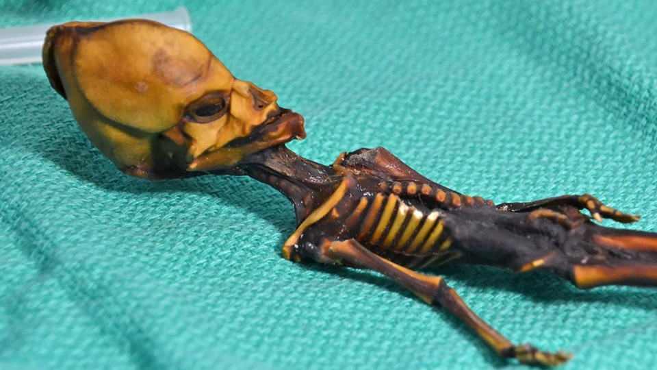 The mummified remains of a girl